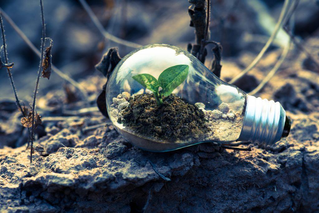 sostenibilidad-10-claves-empresas-sostenibles